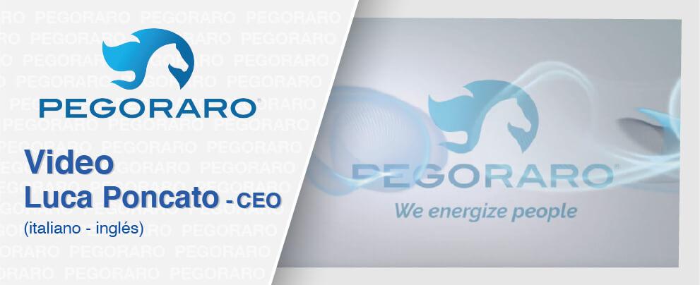 CEO-Pegoraro